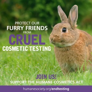End Cosmetic Testing HSUS